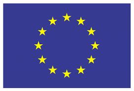 Oldest Flag In Europe World U0027s Oldest Tagged Terek Sandpiper Discovered In Belarus Birdlife