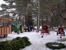 best christmas tree farms near detroit cbs detroit