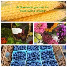 Cherry Point Farm Market by Corncollage Jpg
