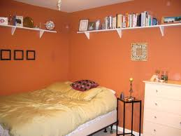 fresh cheap burnt orange interior paint colors 22213
