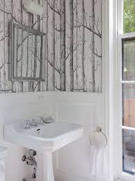 birch wallpaper houzz