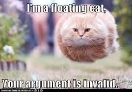 Meme Your Argument Is Invalid - i m a floating cat your argument is invalid lolcats lol cat