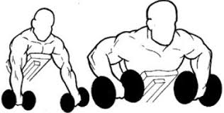 Incline Bench Dumbbell Rows Complete Guide On Fitness Exercises U0026 Measures Build Your New Body