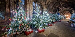 chester cathedral christmas tree festival in pictures chester