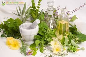 obat kuat dengan herbal 100 alami pusat obat kuat herbal terbaik