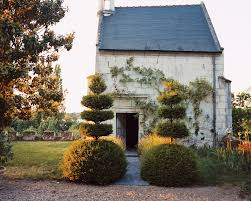 Yew Topiary - the best topiaries in vogue vogue
