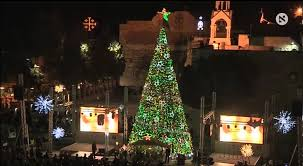 palestinians light up a tree in the west bank town of
