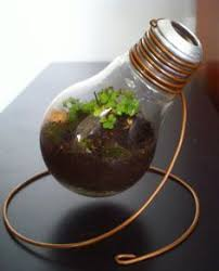 How To Make A Light Bulb Best 25 Light Bulb Art Ideas On Pinterest Light Bulb Drawing