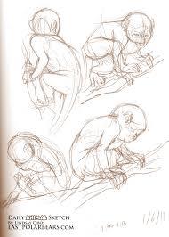 daily animal sketch u2013 de brazza u0027s monkey u2013 last of the polar bears