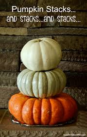 pumpkin stacks and stacks and stacks toot sweet 4 two