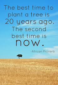 tree quotes images and pictures