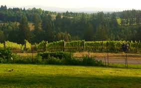 northern willamette valley oregon tayloreason wine food and