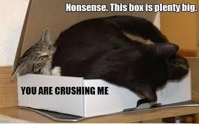 Nonsense Meme - nonsense this box is pretty big cat meme cat planet cat planet