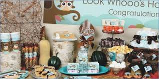 unique baby shower themes for boys baby shower owl theme boy cairnstravel info