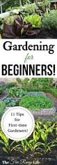 25 best ideas about how to garden on pinterest vegetable