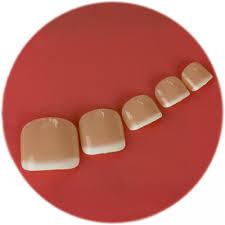 false toenails perfect 10 false toenails french manicure bare