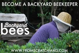 beekeeping become a backyard beekeeper from scratch magazine