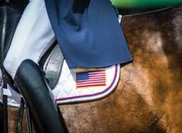 Horse With American Flag The Rio Rebound Expert How To For English Riders