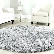 Shag Carpet Area Rugs Sophisticated Area Rug Shag U2013 Classof Co
