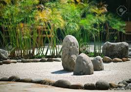 a peaceful zen rock garden with papyrus plant stock photo picture