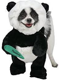 Female Dog Halloween Costumes Amazon Costumes Apparel U0026 Accessories Pet Supplies