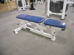 Life Fitness Multi Adjustable Bench Poll Best Bench For 1 000 Bodybuilding Com Forums