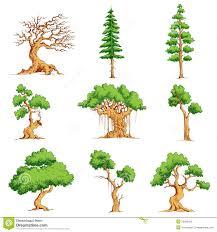 vector tree set stock vector image of drawing organic 23002530