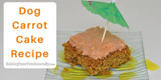 dog cake healthy dog treat recipes dog carrot cake recipe raising your