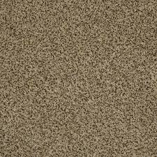 Shaw Area Rugs Shop Shaw Private Oasis Ii Bahia Rectangular Indoor Tufted Area