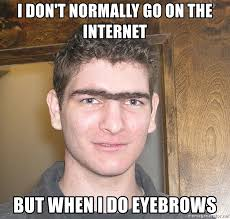 Internet Boy Meme - i don t normally go on the internet but when i do eyebrows