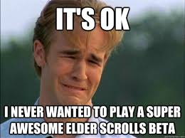 Elder Scrolls Online Memes - it s ok i never wanted to play a super awesome elder scrolls beta