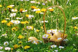healthy easter baskets healthy easter basket ideas