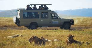 african safari car october 2016 attorney info blog