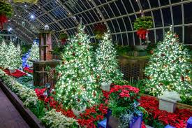 family garden trains winter flower show and light garden holiday magic phipps