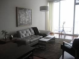 Living Room Furniture Raleigh by High Rise Condo In Downtown Raleigh Contemporary Living Room