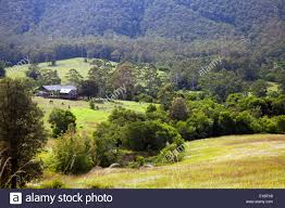 country lifestyle forster mid north coast nsw australia stock