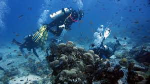 Buy scuba gear scuba diving and snorkeling equipment and
