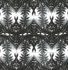 creative pattern photography horst s patterns from nature creative review