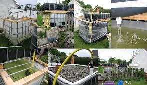 aquaponics backyard diy