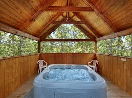 Jacuzzi Tub 1 Bedroom With Tree House Tub Vrbo