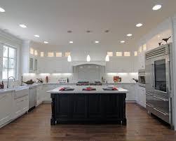 Pendant Lighting For Recessed Lights Interior Design Home Design Recessed And Pendant Lighting Black