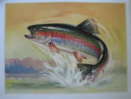 1940 u0027s rainbow trout u0026 fly antique fly fishing vintage fish poster