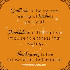 thanksgiving and gratitude quotes like success