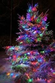 Lighted Outdoor Christmas Displays by Outdoor Christmas Tree With Snowflakes Glass Balls And String