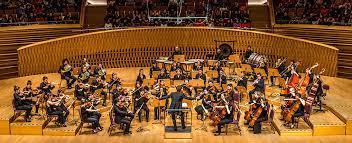 orchestre chambre orchestre de chambre nouvelle europe direction nicolas krauze