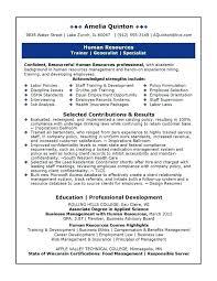 sample of resume for sales representative sale rep resume sales