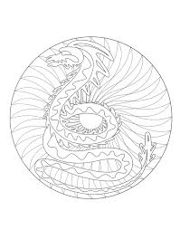 to print mandala dragon 2 mandalas with animals 100 mandalas