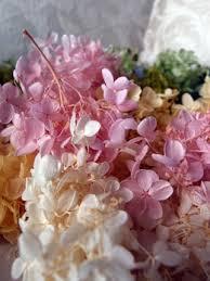 hydrangeas flowers hydrangeas flowers dried preserved silk