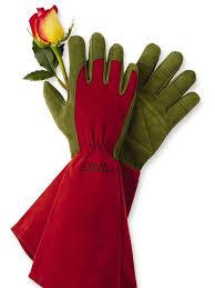 Gifts For Vegetable Gardeners by 11 No Fail Gifts For Gardeners Hgtv
