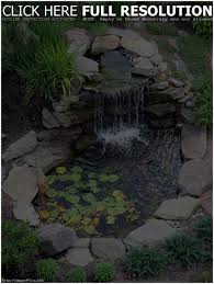 backyards ergonomic amazing gardens with small backyard pond